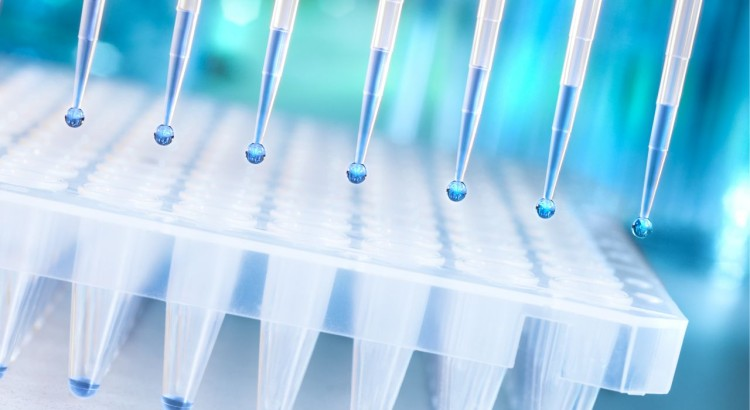 microplate with tips blue